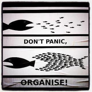 dont panic organize fishes